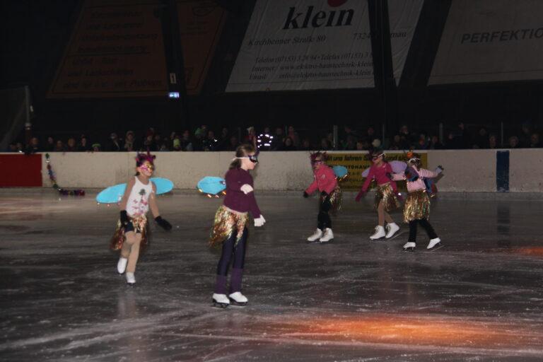 Eislauf Schaulaufen 2014_3